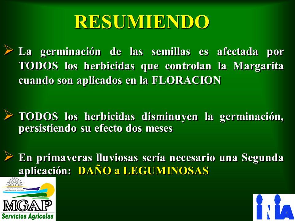 RESUMIENDOLa germinación de las semillas es afectada por TODOS los herbicidas que controlan la Margarita cuando son aplicados en la FLORACION.