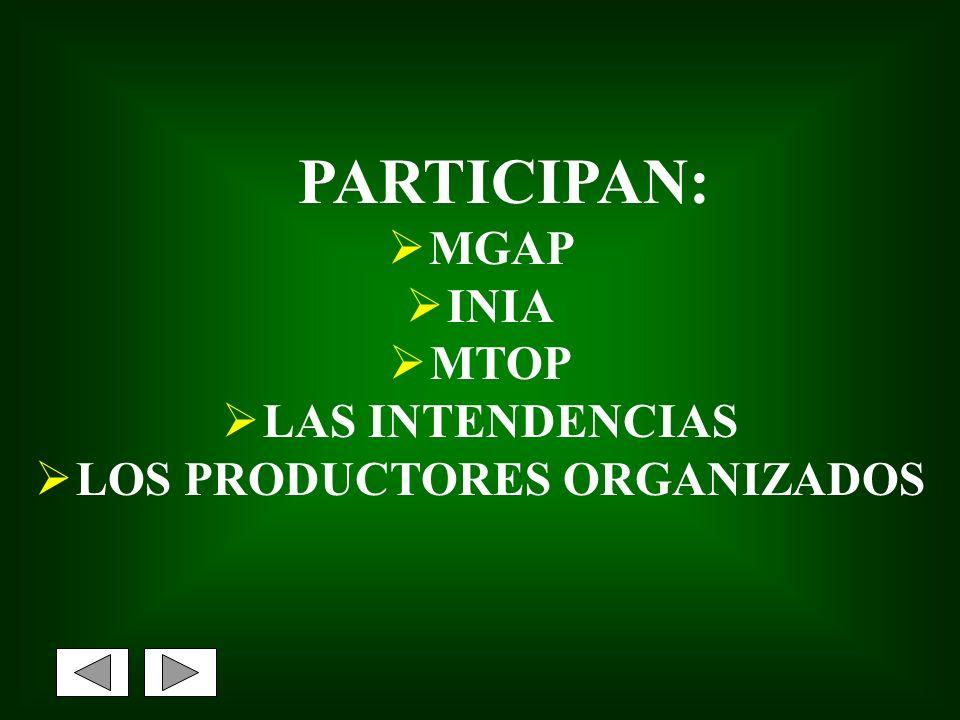 LOS PRODUCTORES ORGANIZADOS