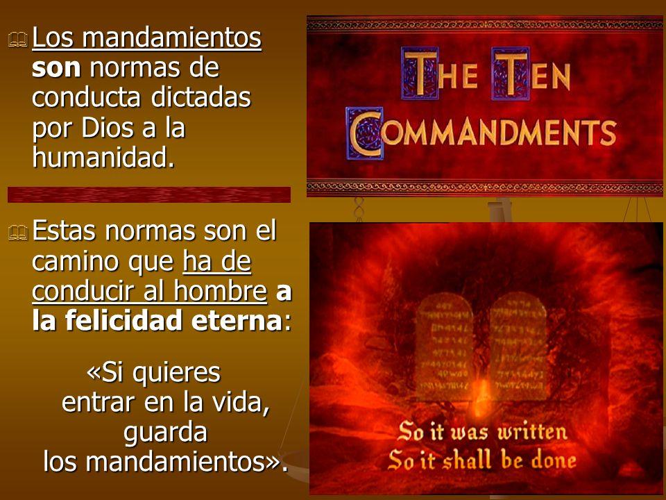 «Si quieres entrar en la vida, guarda los mandamientos».
