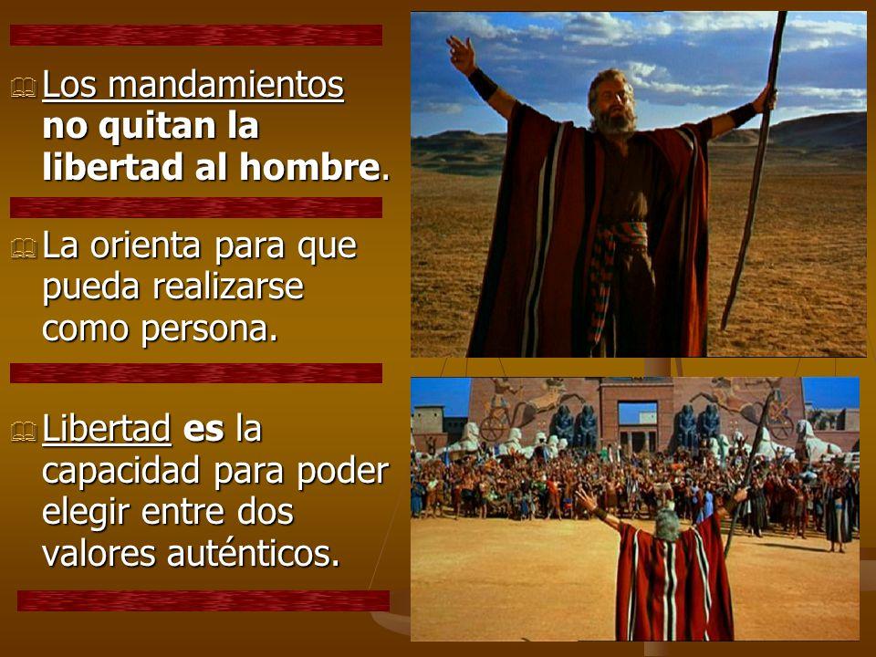 Los mandamientos no quitan la libertad al hombre.