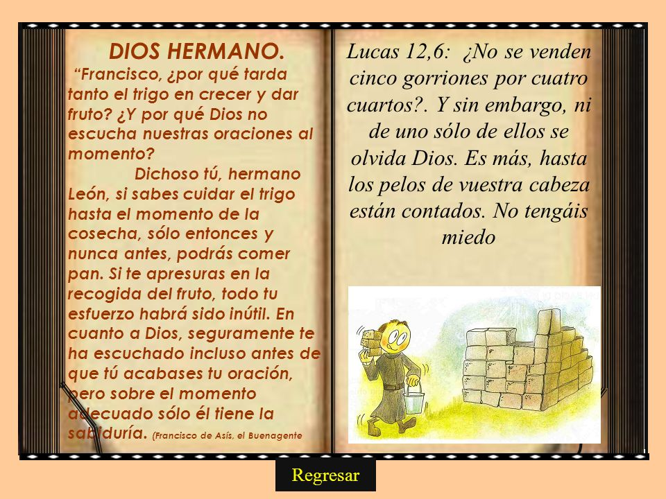 DIOS HERMANO. Francisco, ¿por qué tarda tanto el trigo en crecer y dar fruto ¿Y por qué Dios no escucha nuestras oraciones al momento