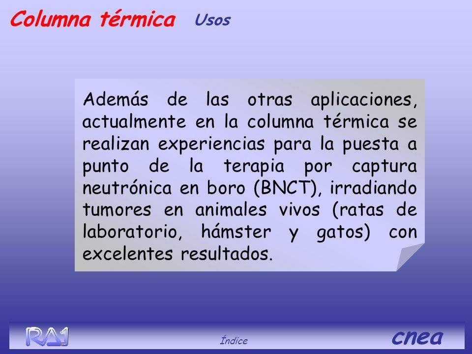 Columna térmica Usos.
