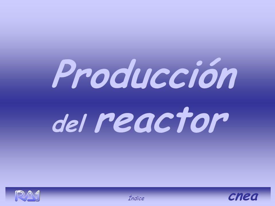Producción del reactor