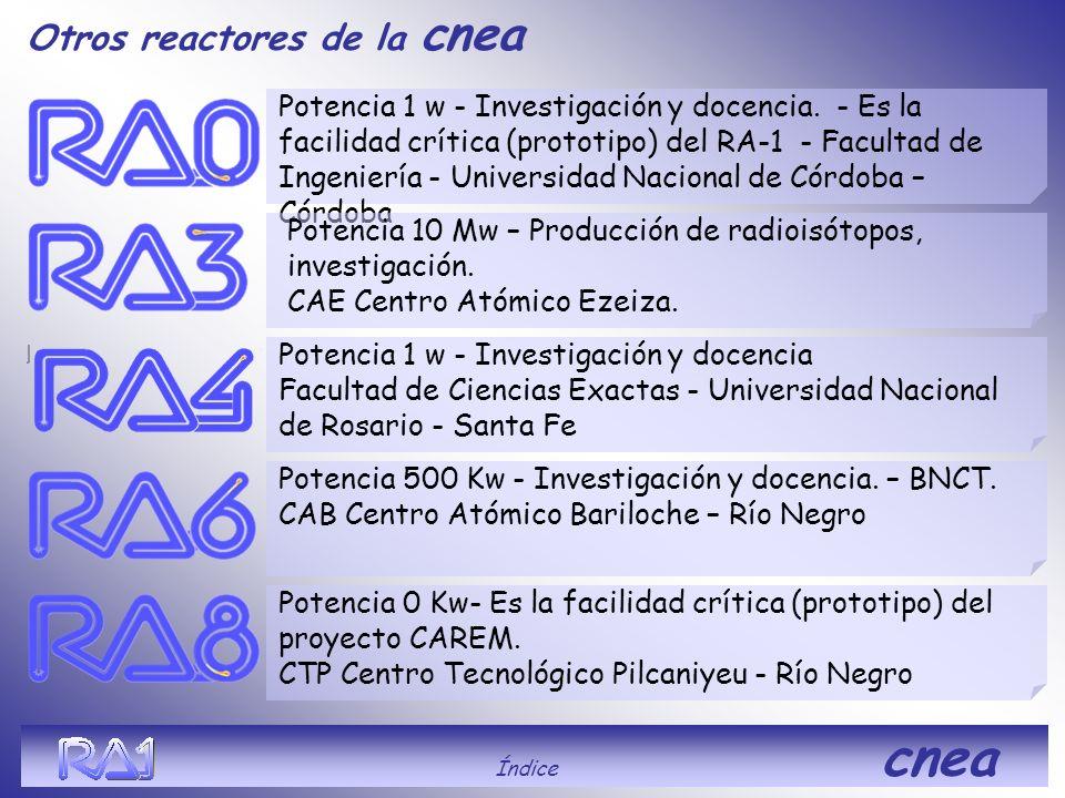Otros reactores de la cnea