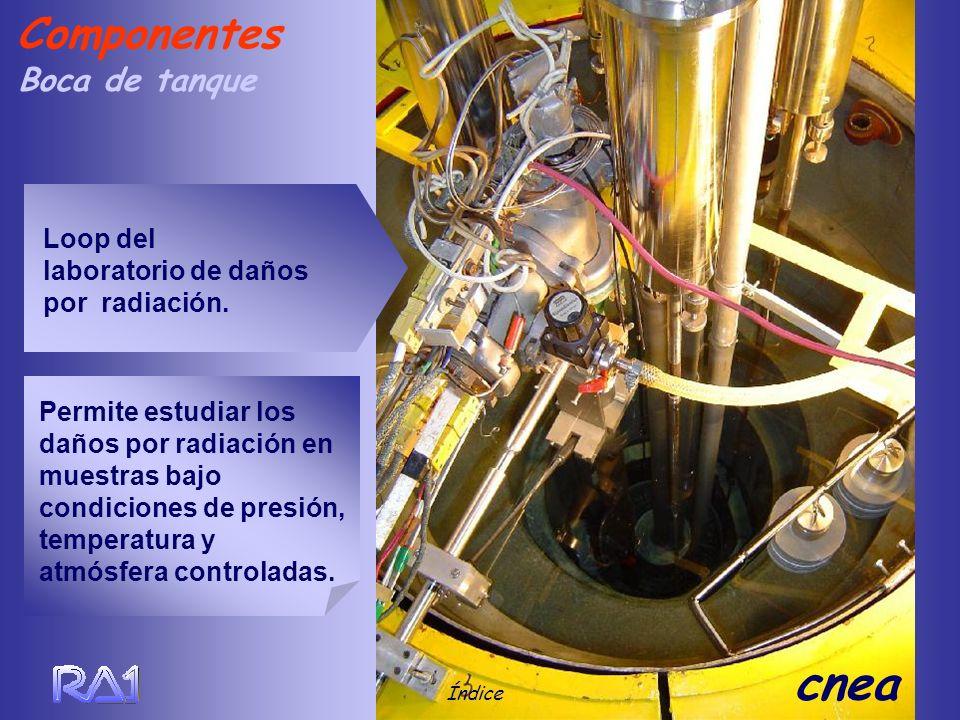 Componentes Boca de tanque Loop del laboratorio de daños