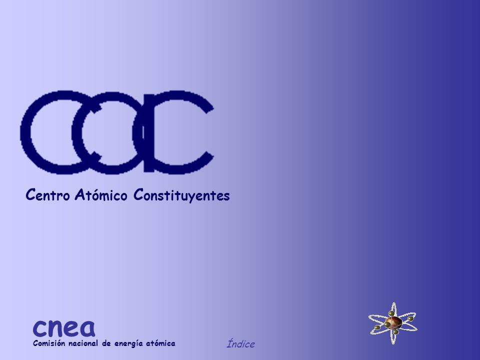 cnea Centro Atómico Constituyentes Índice