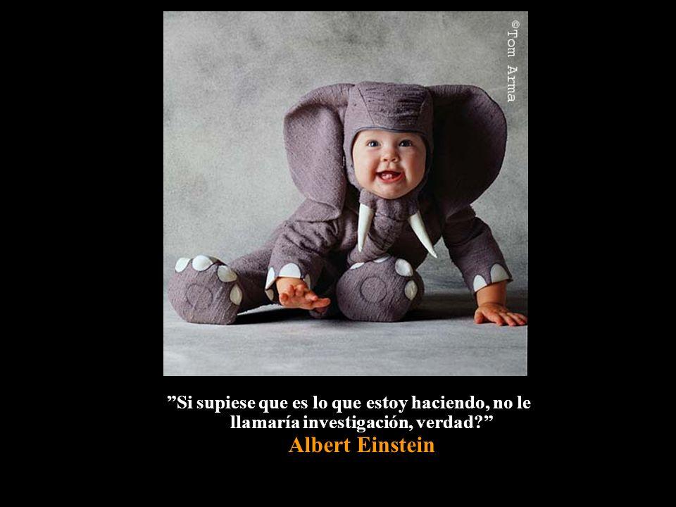 Si supiese que es lo que estoy haciendo, no le llamaría investigación, verdad Albert Einstein
