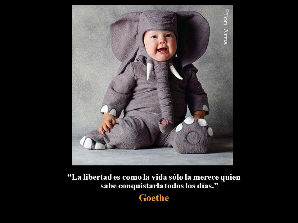 La libertad es como la vida sólo la merece quien sabe conquistarla todos los días.