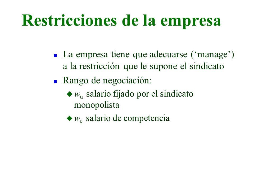 Restricciones de la empresa