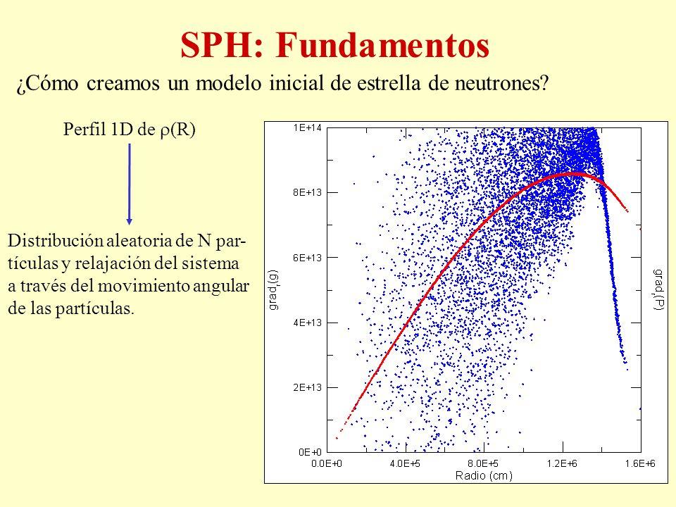 SPH: Fundamentos ¿Cómo creamos un modelo inicial de estrella de neutrones Perfil 1D de (R)