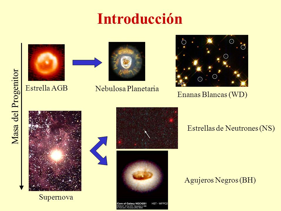 Introducción Masa del Progenitor Estrella AGB Nebulosa Planetaria