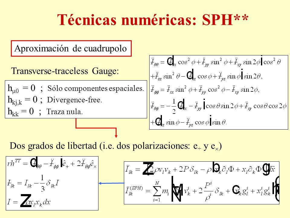 Técnicas numéricas: SPH**