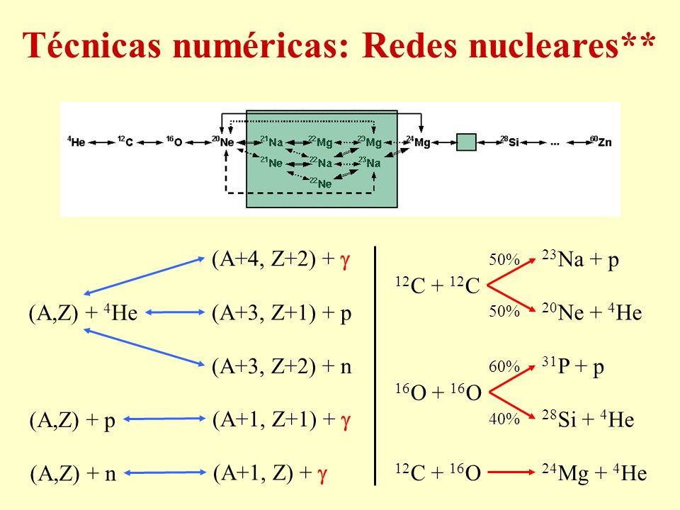 Técnicas numéricas: Redes nucleares**