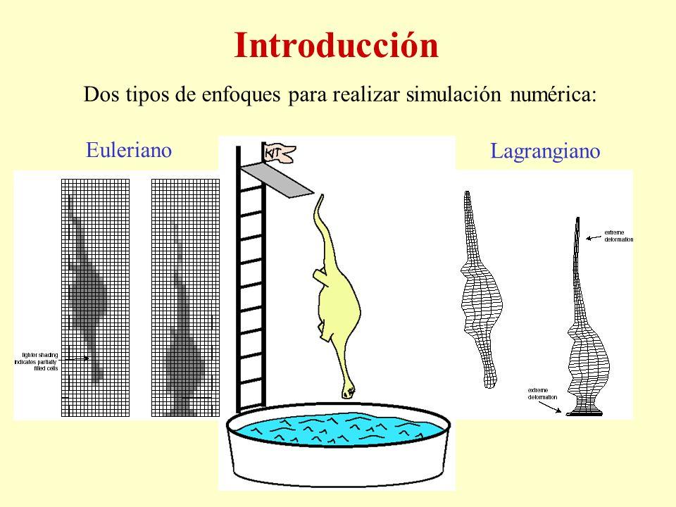Introducción Dos tipos de enfoques para realizar simulación numérica: