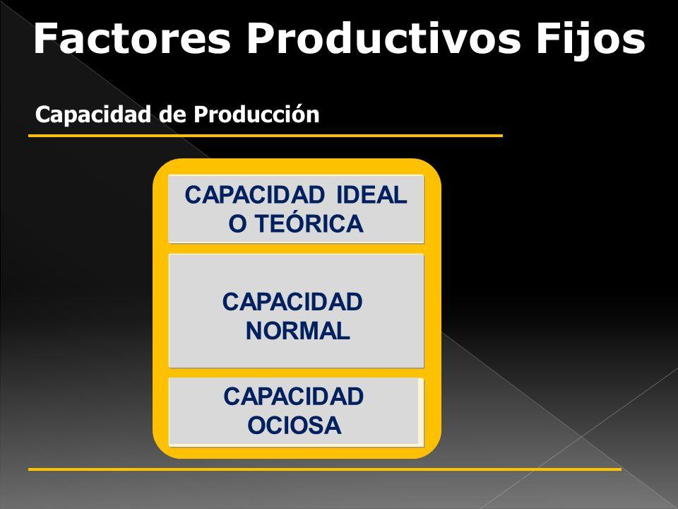 Factores Productivos Fijos