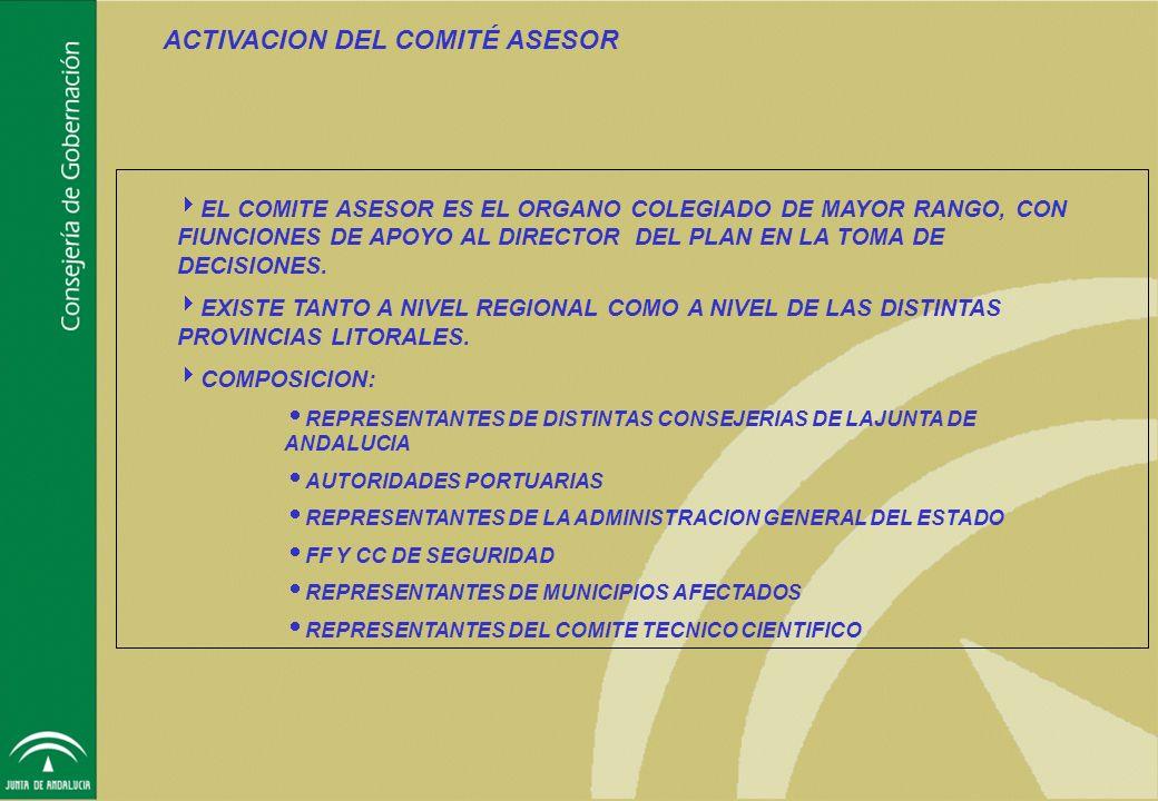 ACTIVACION DEL COMITÉ ASESOR