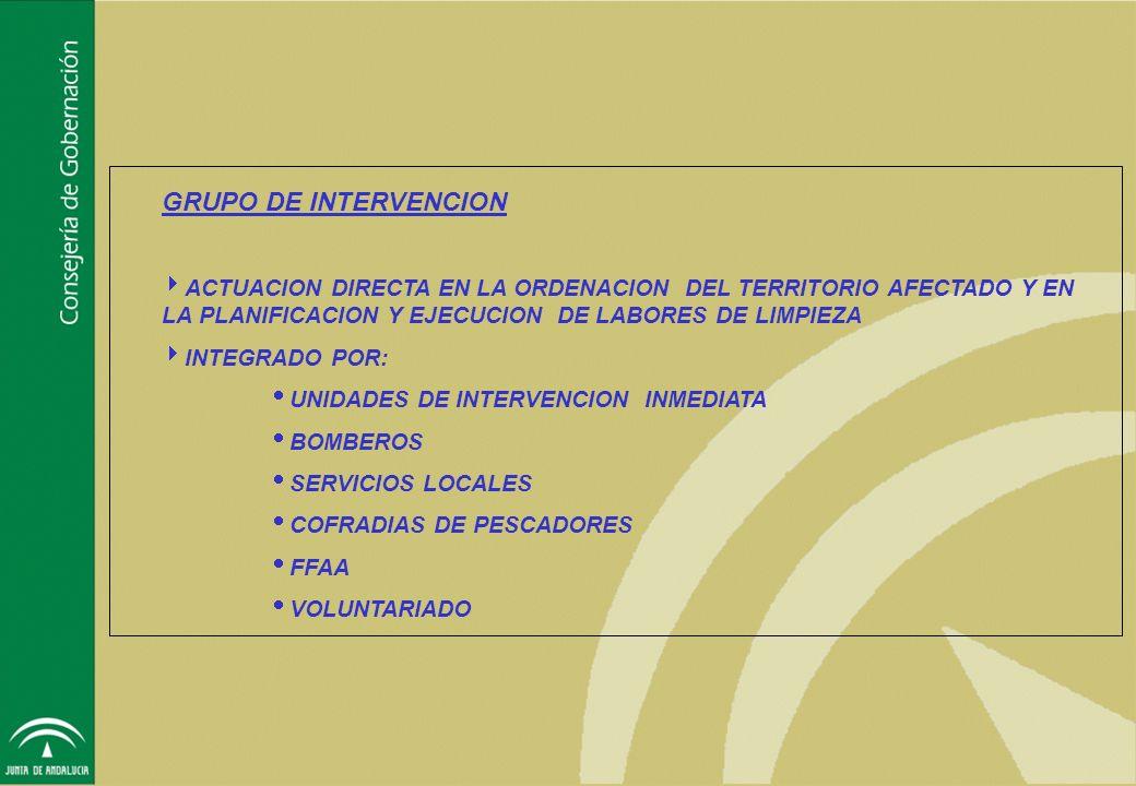 GRUPO DE INTERVENCION ACTUACION DIRECTA EN LA ORDENACION DEL TERRITORIO AFECTADO Y EN LA PLANIFICACION Y EJECUCION DE LABORES DE LIMPIEZA.