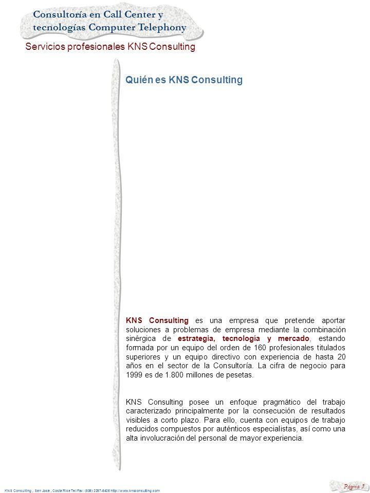 Quién es KNS Consulting