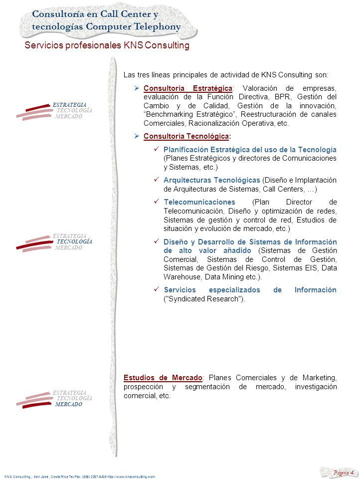 Las tres líneas principales de actividad de KNS Consulting son:
