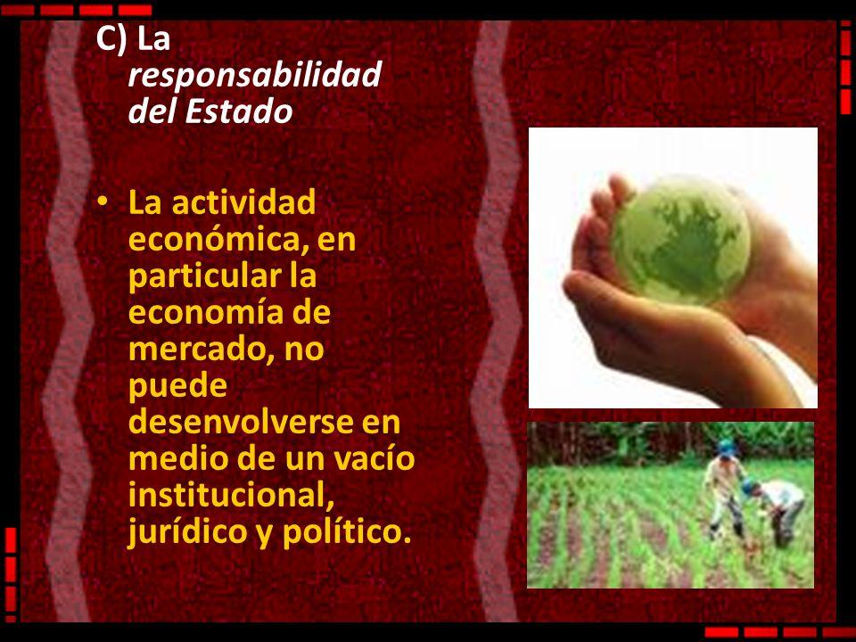 C) La responsabilidad del Estado