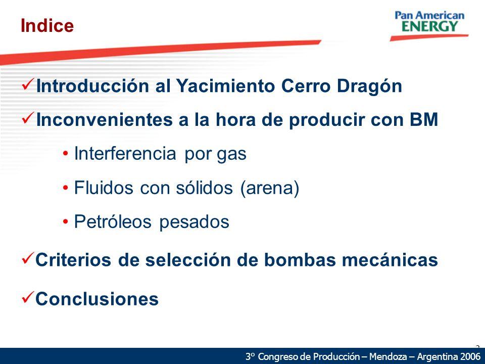 Introducción al Yacimiento Cerro Dragón