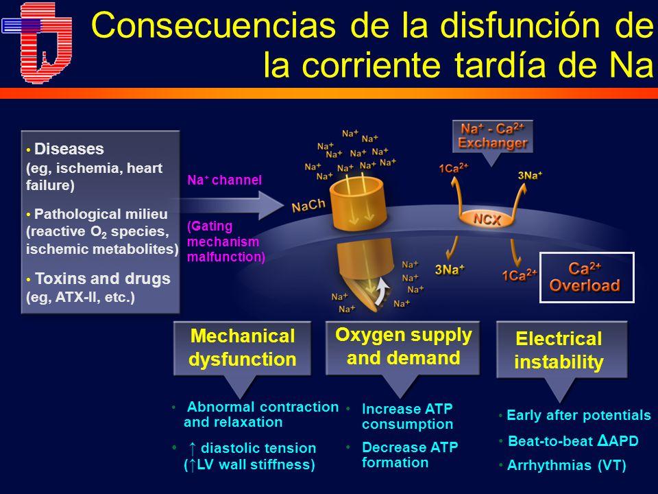 Consecuencias de la disfunción de la corriente tardía de Na