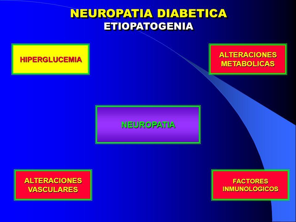 NEUROPATIA DIABETICA ETIOPATOGENIA NEUROPATIA ALTERACIONES