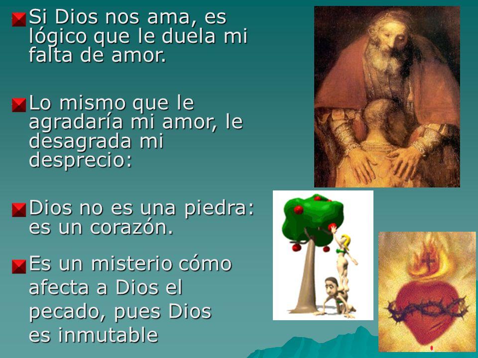Si Dios nos ama, es lógico que le duela mi falta de amor.