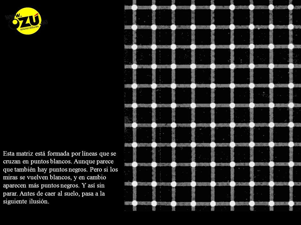 Esta matriz está formada por líneas que se cruzan en puntos blancos
