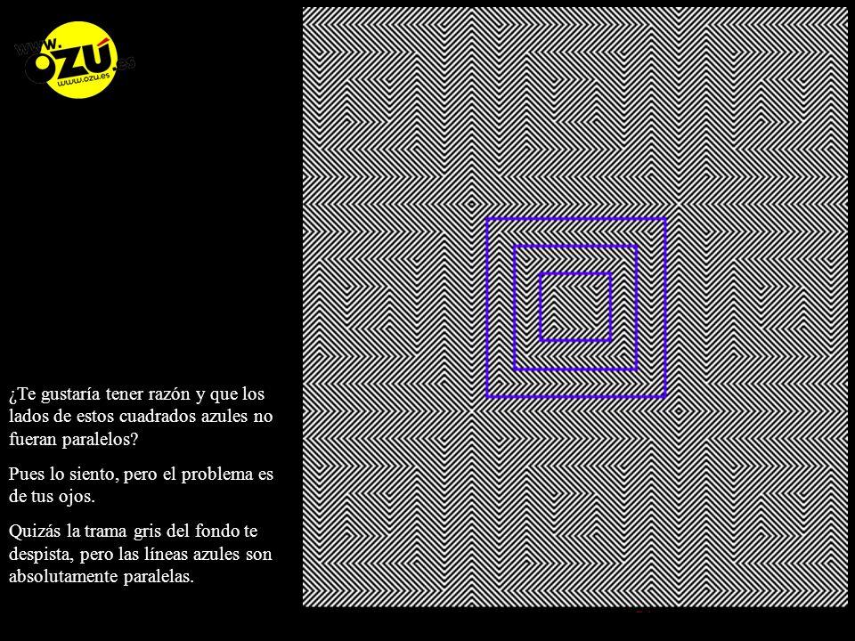 ¿Te gustaría tener razón y que los lados de estos cuadrados azules no fueran paralelos
