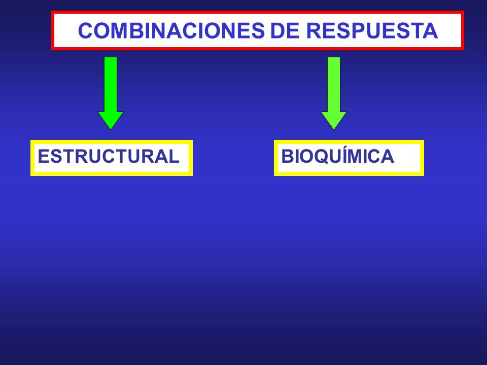 COMBINACIONES DE RESPUESTA