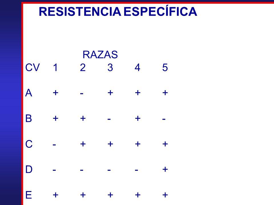 RESISTENCIA ESPECÍFICA