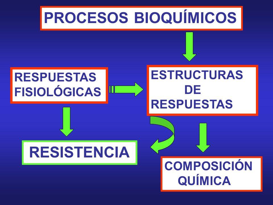 PROCESOS BIOQUÍMICOS ESTRUCTURAS RESPUESTAS DE RESPUESTAS FISIOLÓGICAS