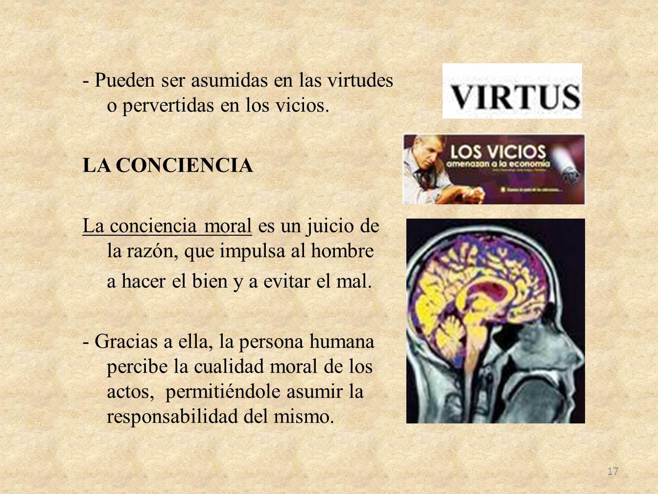 - Pueden ser asumidas en las virtudes o pervertidas en los vicios