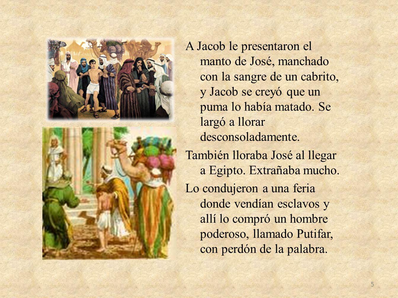 A Jacob le presentaron el manto de José, manchado con la sangre de un cabrito, y Jacob se creyó que un puma lo había matado.