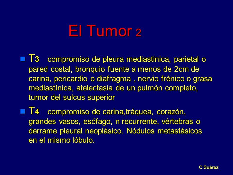 El Tumor 2