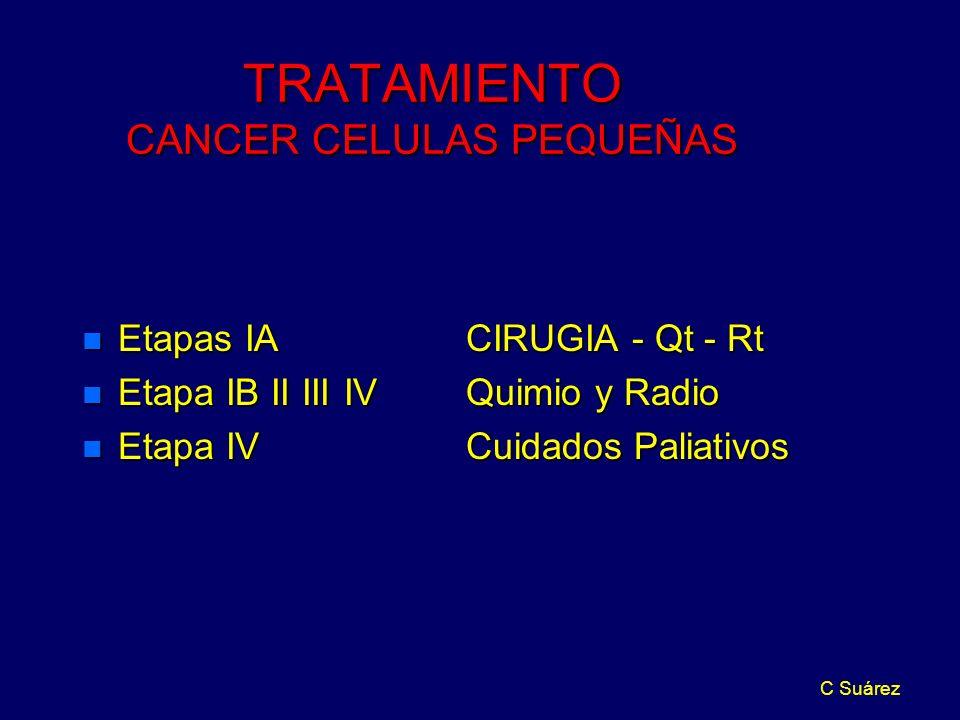 TRATAMIENTO CANCER CELULAS PEQUEÑAS