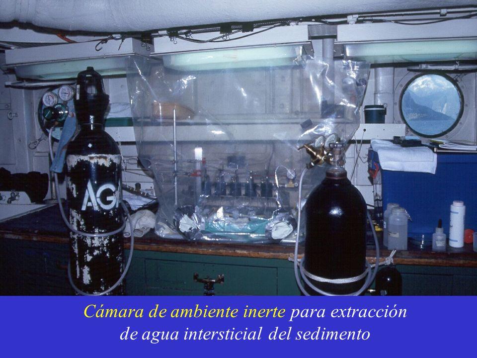 Cámara de ambiente inerte para extracción