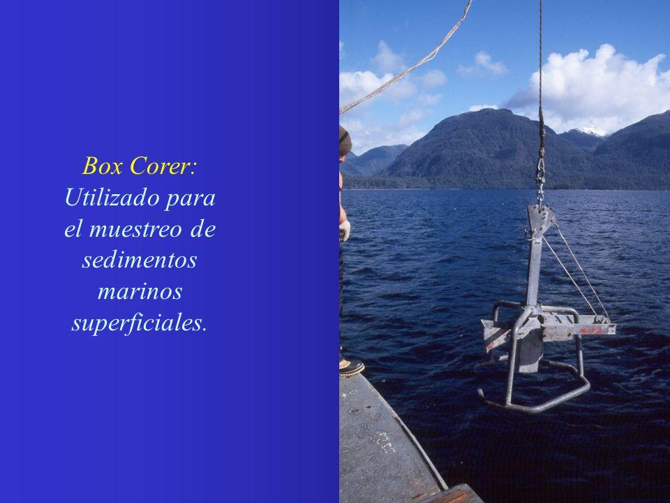 Box Corer: Utilizado para el muestreo de sedimentos marinos superficiales.