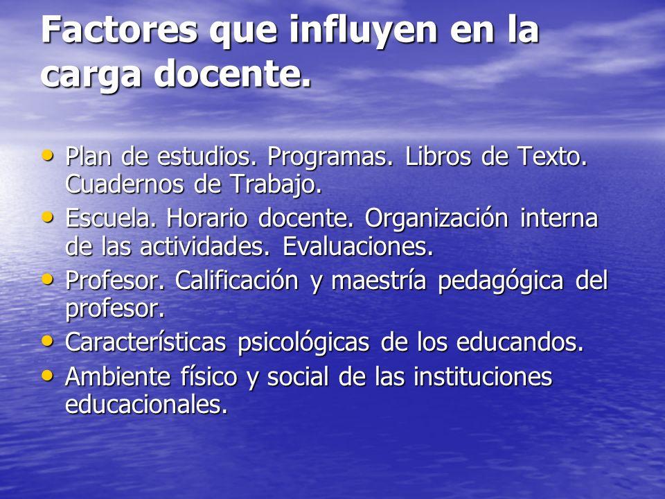 Factores que influyen en la carga docente.