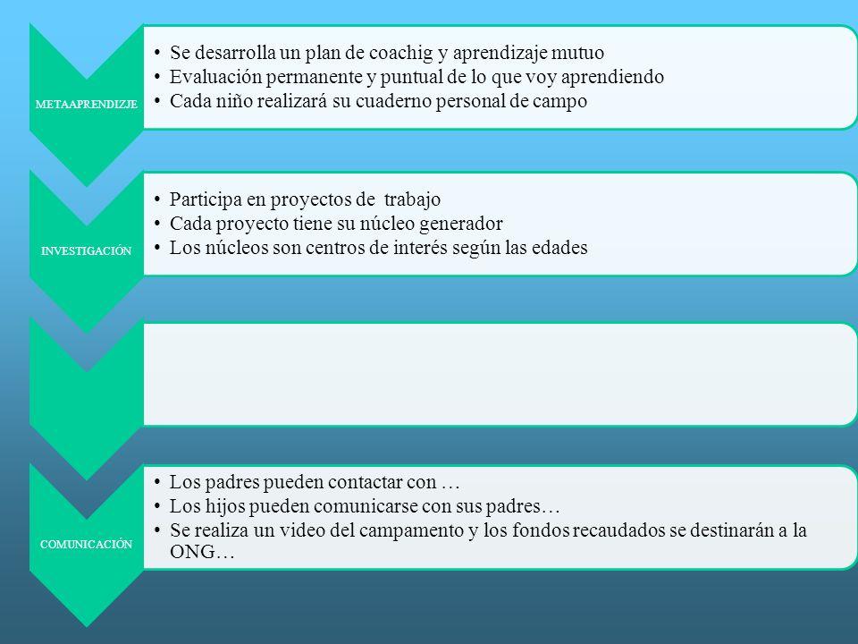 8 METAAPRENDIZJE Se desarrolla un plan de coachig y aprendizaje mutuo