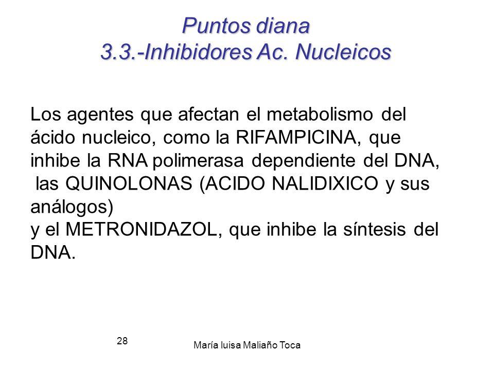 Puntos diana 3.3.-Inhibidores Ac. Nucleicos