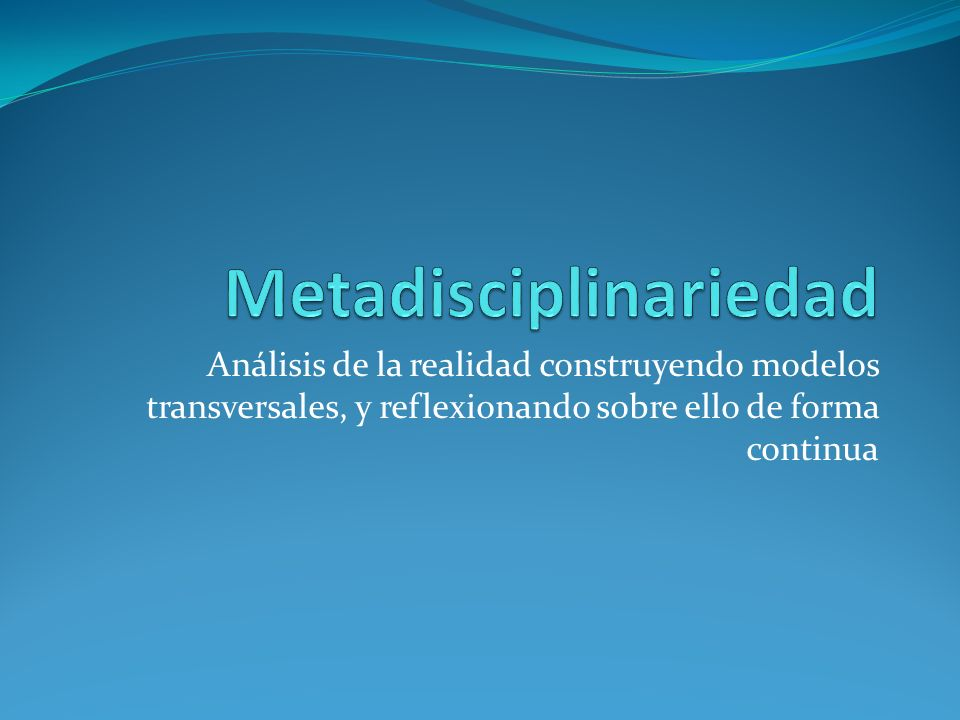 Metadisciplinariedad