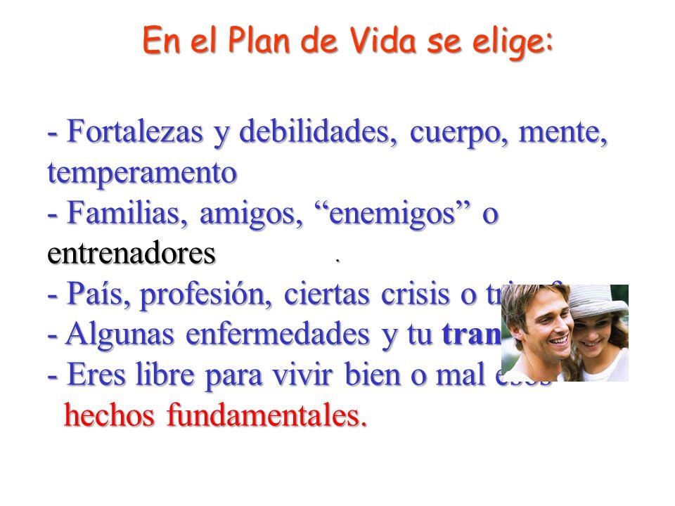 En el Plan de Vida se elige:
