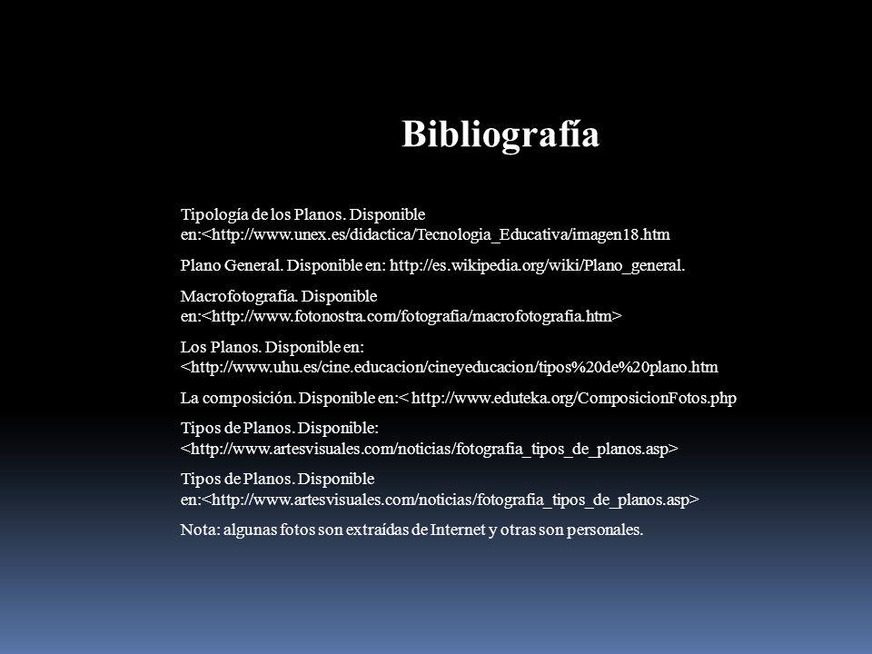 Bibliografía Tipología de los Planos. Disponible en:<http://www.unex.es/didactica/Tecnologia_Educativa/imagen18.htm.