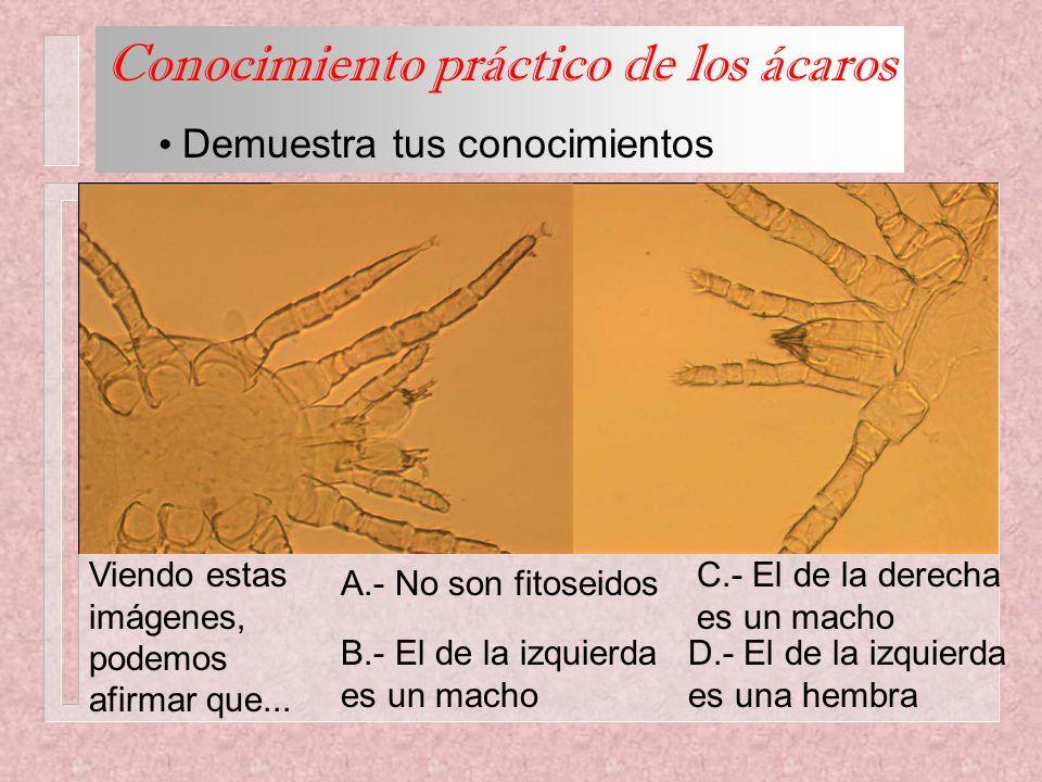 Conocimiento práctico de los ácaros