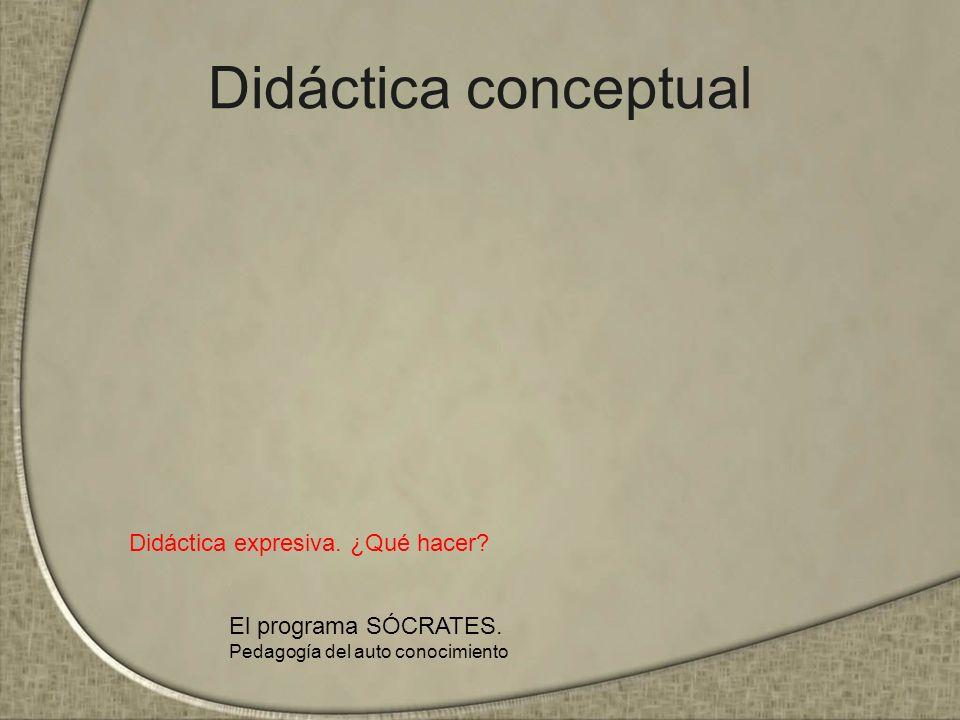 Didáctica conceptual Didáctica expresiva. ¿Qué hacer