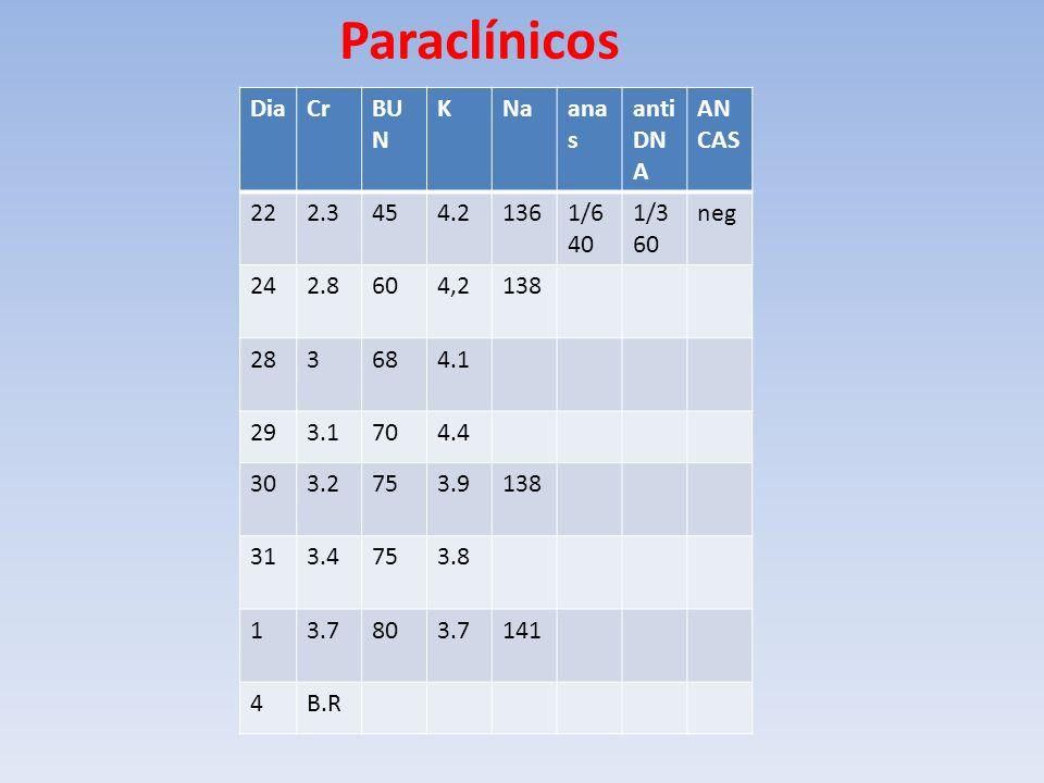 Paraclínicos Dia Cr BUN K Na anas antiDNA ANCAS 22 2.3 45 4.2 136