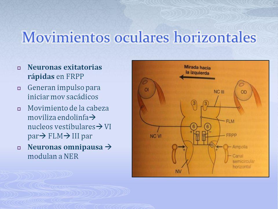 Movimientos oculares horizontales