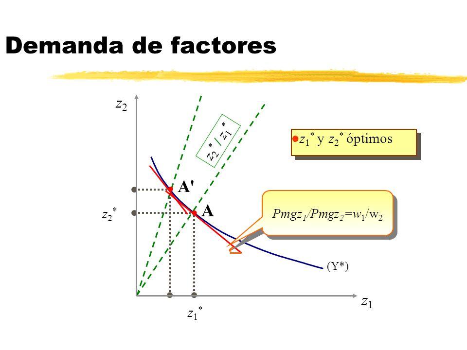 Demanda de factores A A z2 z1 z2* / z1* z1* y z2* óptimos z2* z1*